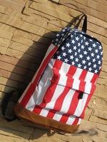 Школьный рюкзак 543  534