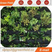 Vertical garden outdoor green plants, outdoor vertical garden, garden outdoor green plants