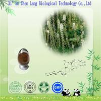 Black Cohosh Extract Powder 2.5% Triterpenoid Saponis