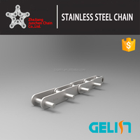 Double Pitch Stainless steel roller Chains with Extended Pin Attachments chain with extended Pin