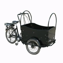 Electric cargo bike tricycle made in China