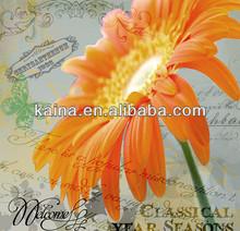 YIWU KAINA FLOWER SERIES CRYSTAL DIY HAND PAINTING WALL ARTS