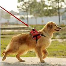 multifunction decent and useful pet harness