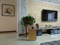 china home appliance air purifier remote control air cleaner for smoking room,restroom.office