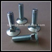 China excellent quantiy white blue zinc plated m10 countersunk bolt