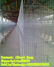 pigeon cages for sale for poultry farm