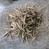 100% purity moso bamboo seeds bulk Bamboo seeds