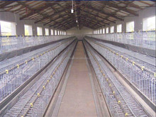 2015 new type chicken cage for layer