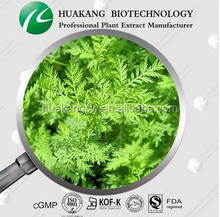Artemisia herb extract function: Promote hematopoietic Artemisia annua extract/China Supplier