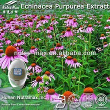 High Quality Echinacea Angustifolia Extract - Supplied By Nutramax