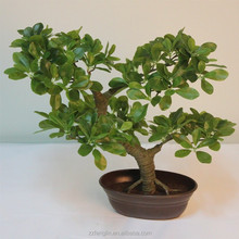 China factory directly wholesale lifelike marking artificial bonsai leaves for sale