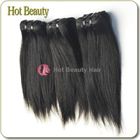 Wholesale Price Fast Delivery AAAAA+ Hot Beauty Straight Hair