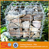 Hot Sell Gabion Welded Mesh Cage