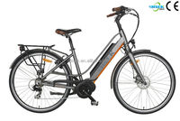 retrofit kit electric bicycle with lithium ion battery and pump optional