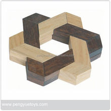 Polygon Wooden Cube Puzzle