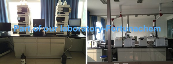 Part of our laboratory_Fortunachem.jpg