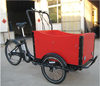 2015 hot sale 3 wheel Adult Electric Tricycle with passenger seat