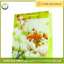 China Manufacturer Moisture Proof big pp shopping bag,pocket shopping bag,pp shopping bag pp