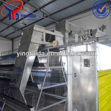 chicken cages factory supply/manufacture of chicken cage equipments
