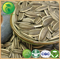 Agriculture Products Sunflower Seeds Oil