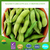 Frozen Edamame Soya Beans from 2015 new crop with best price
