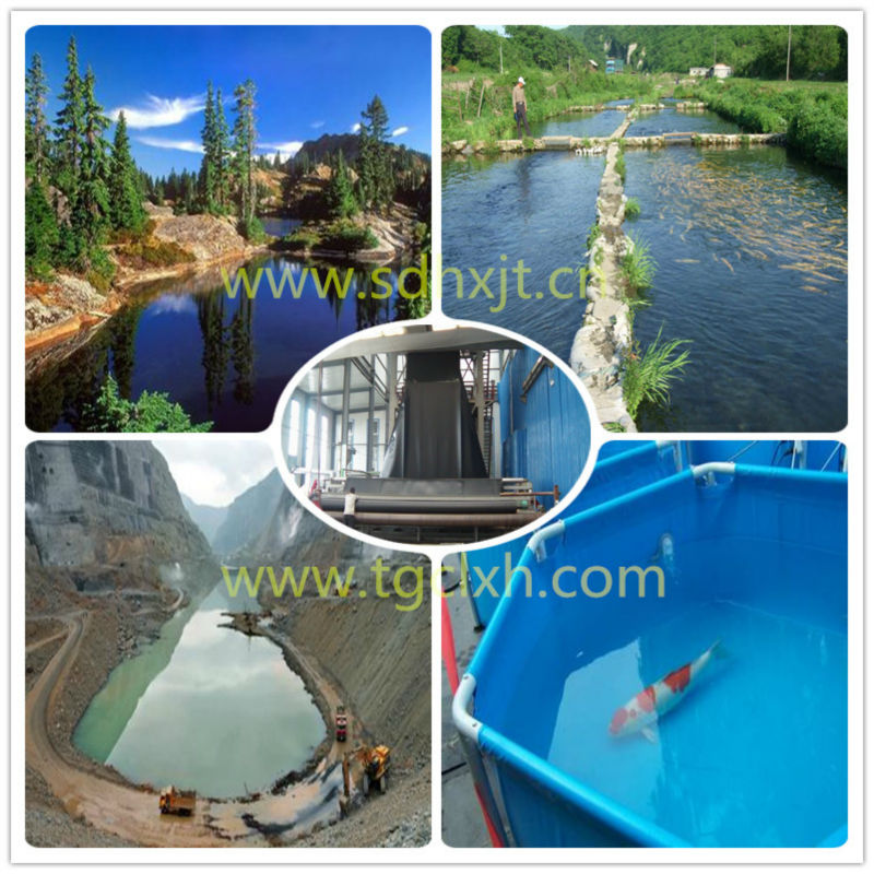 High quality geomembrane in aquaculture fish pond liner for Koi pond water quality