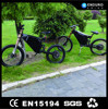 long life mountain 1500w three wheel electric motor bike
