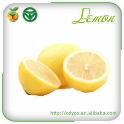 fresh lemon lime fruit importers