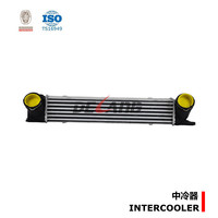 Intercooler turbo for BMW 1 E81-E82-E87-E88 (DL-E064)