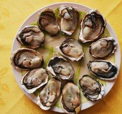 Sell 1kg Oyster Shell Fine Powder