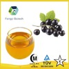 100%Pure High Quality Black Currant Seed Oil, Black Currant Oil For Cosmetics