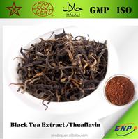 20% Total Tea Polyphenols Black Tea Extract Powder from BNP