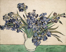 High quality reproductions of famous paintings -Irises for wall decoration