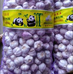 China fresh garlic/garlic price best selling hot sell