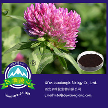 Manufacturer supply red clover extract / isoflavone 8%-40% with best price