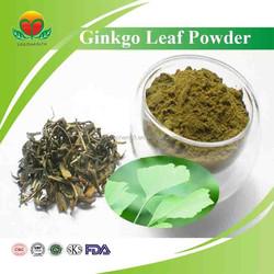 Manufacturer Suply USP/CP/EP standard Ginkgo Biloba Powder