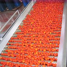 Pâte de tomate de haute qualité tomate ketchup marque