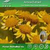Arnica Flower Extract, Arnica Flower Extract Powder, Arnica Flower Extract 6:1