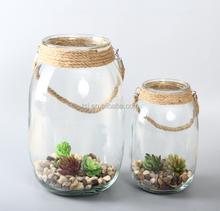 terrarium glass