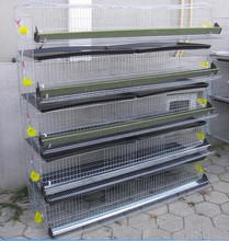 H type 5 tiers 280-300 birds quail cage project sold to Russia