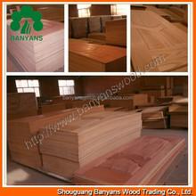 High Qulity Natural Ash/Beech/Walnut veneer door skin Price