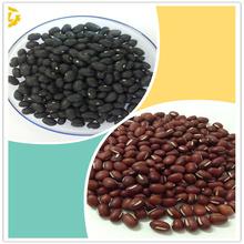 Organic Vegetable Seeds like Black Kidney Beans