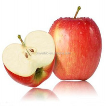 Top quality Polyphenol Phloridzin Phloretin Apple Extract