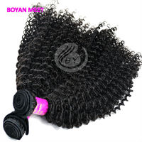 Factory Price Professional Quality Cheap Afro Kinky Curly 100% Indian Remy Curly Human Hair Extensions