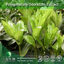 Polygonatum odoratum Extract Powder 10:1 in 3W Manufacturer