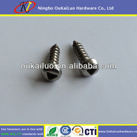 Triangle Recess Security Self Tapping Screw