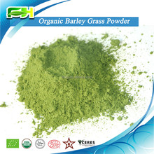 La hierba de cebada en polvo( 100 gramos de muestras de forma gratuita)