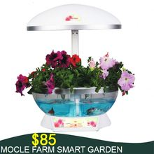 Hot selling cheap decorative table top stands