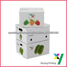 Ecofriendly Custom del cartón de la fruta