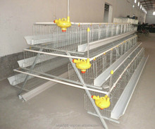 HOT HOT!! A type chicken cage for poultry farm(100% factory price)